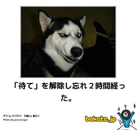 20140706004.jpg